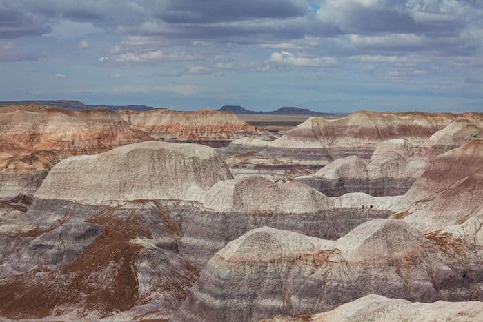 Petrified Forest in Arizona