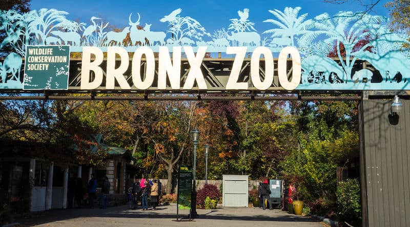 Bronx Zoo, New York